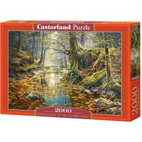 Reminiscence of the Autumn Forest - Puzzle - 2000 Teile von Castorland