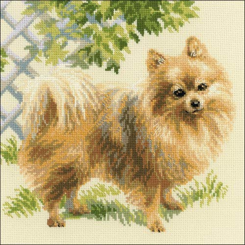 Riolis Pomeranian Cross Stitch Kit, Baumwolle, Multi-Color, 25 X 25 X 0,1 Cm von Riolis