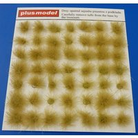 Tufts of grass-dry von plusmodel